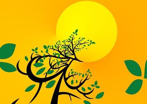 Tree 710662 340